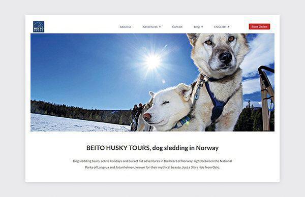 Web design and development of Beito Husky Tours website.